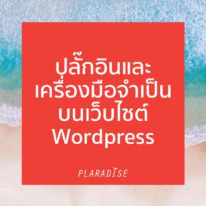 ปลั๊กอิน จำเป็นบน WordPress 11